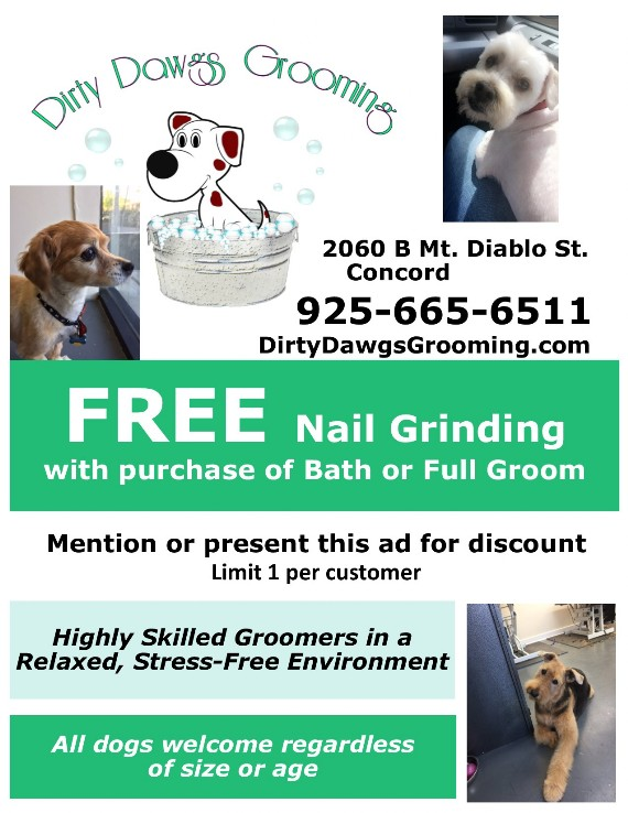 Kiss Coupon to save at Dirty Dawgs Grooming Dog Grooming ...
