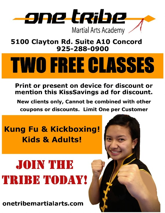 Kung Fu, Kickboxing, Kids & Adults! Join the TRIBE today!